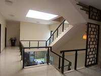 gopalapuram-house-skylight